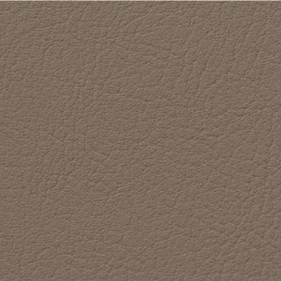 Fotel Biurowy obrotowy XENON NET101 - regulacja podparcia lędźwiowego - VA-15 grafitowy